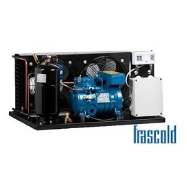 Frascold - ITS D 2 13.1 Y